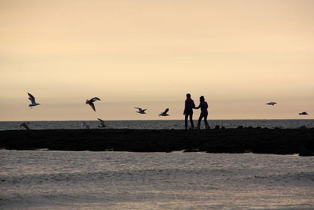 Assurances/Santé - Autor: Martin Fisch - Flickr
